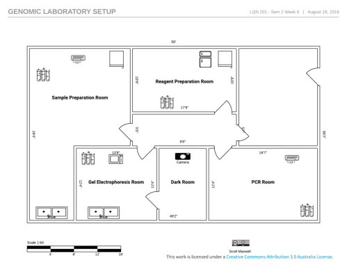 small resolution of week 6 laboratory setup reagent preparation room