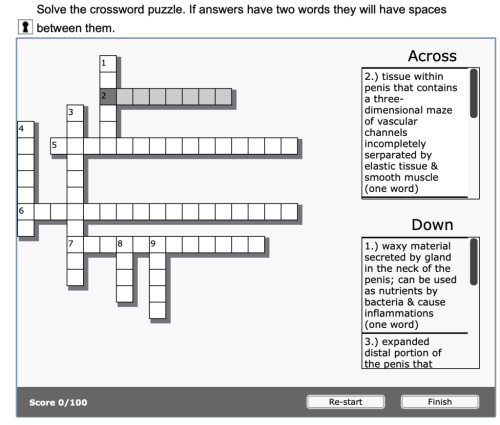 small resolution of chapter 28 male reproductive system crossword puzzle 10 diagram quizlet