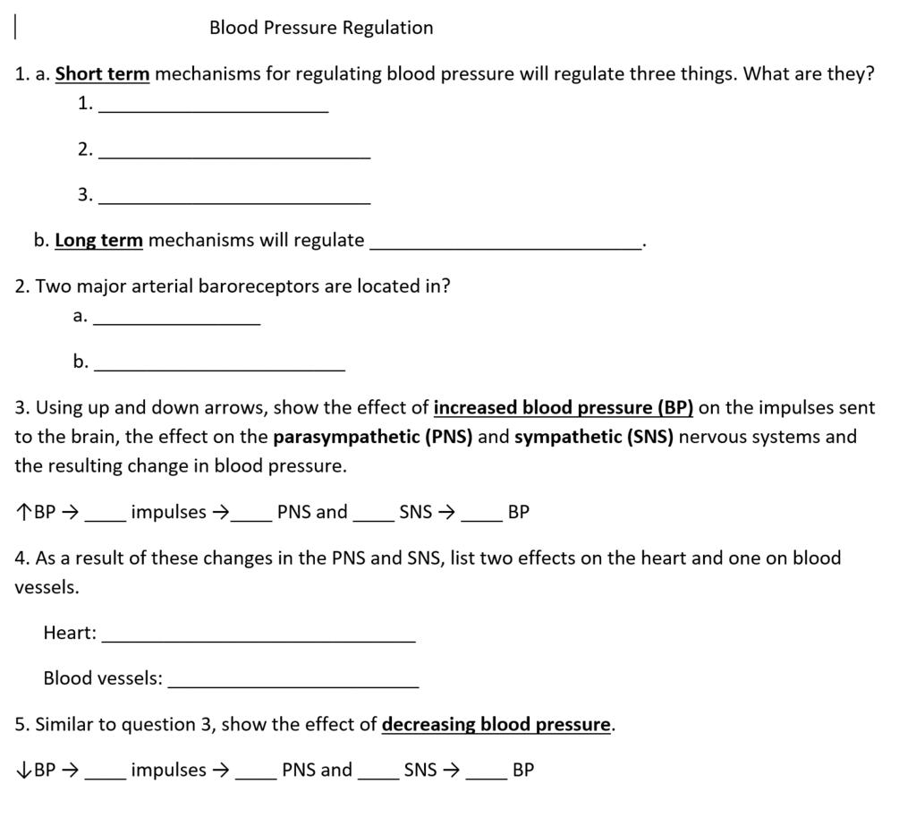Blood Worksheet Quizlet