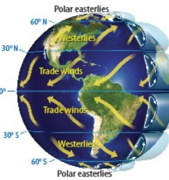 mod 1 geo westerlies polar easterlies and trade winds part 1 [ 1024 x 908 Pixel ]