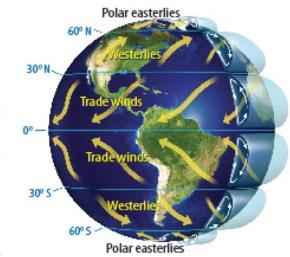 Afbeeldingsresultaat voor polar easterlies
