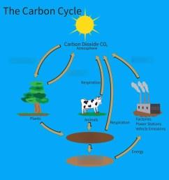 carbon cycle [ 960 x 960 Pixel ]