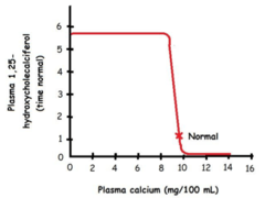 Physio II: Calcium and Phosphate Homeostasis Flashcards