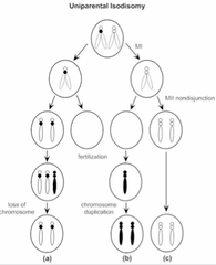 Genetics Review (8): Non-Traditional Inheritance I