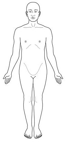 Combo with Anatomical Positions, Body Planes, Directional