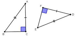 Law of sine/cosine, Triangle congruence, Area flashcards