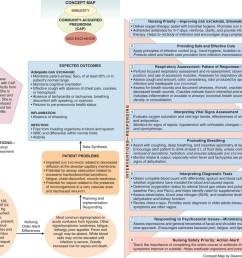 pneumonium diagram [ 1024 x 819 Pixel ]