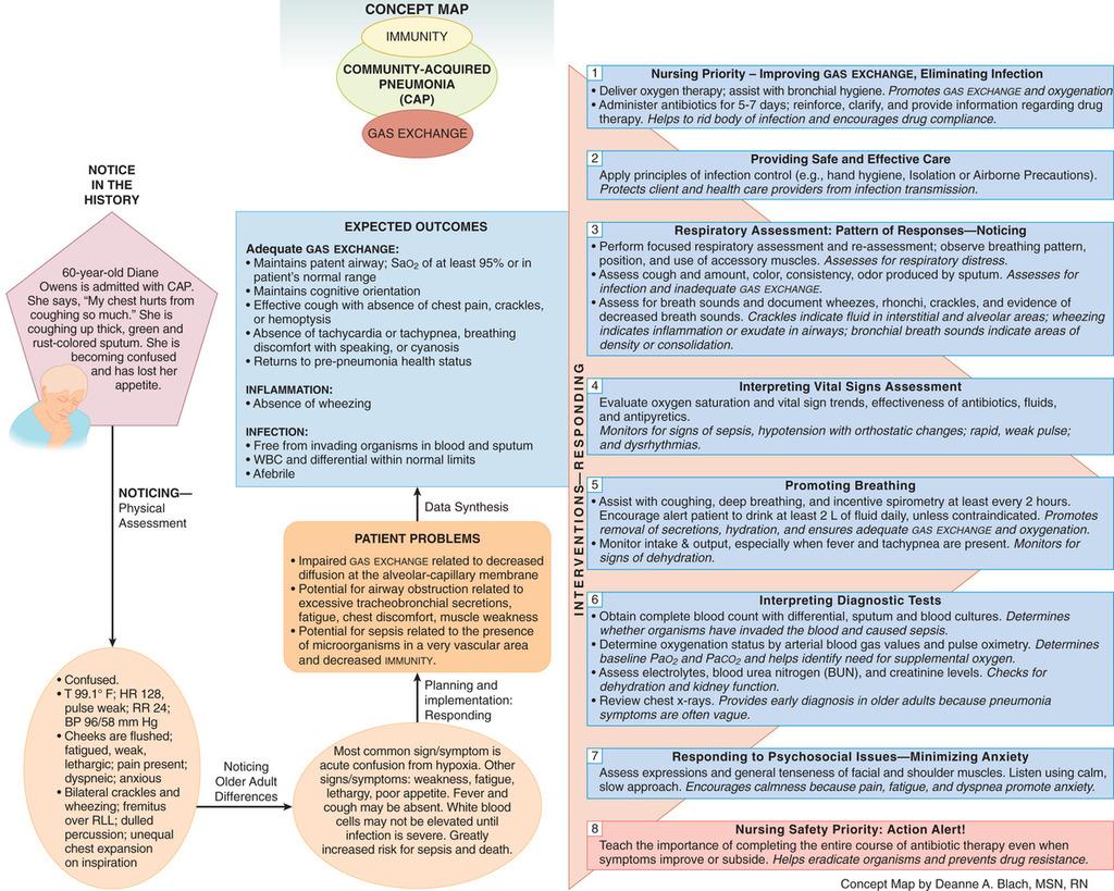 hight resolution of pneumonium diagram
