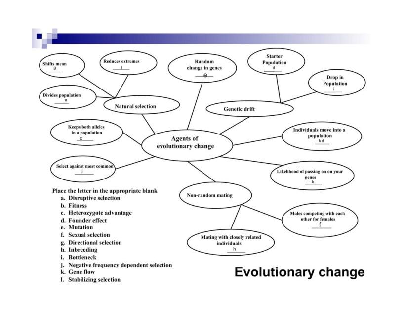 Evolutionary Fitness Quizlet