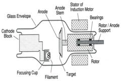 Diagram Of Cathode Ray Tube, Diagram, Free Engine Image