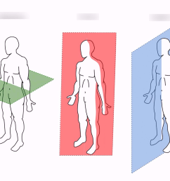 body planes diagram body planes diagram unlabeled [ 1024 x 845 Pixel ]