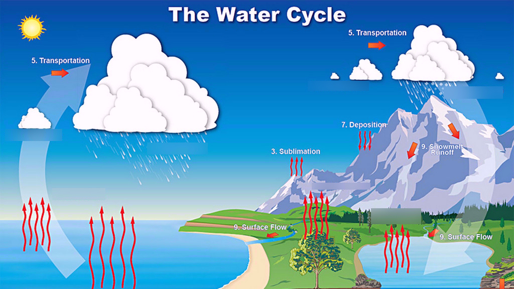 water cycle diagram quizlet