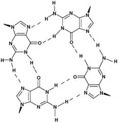 Final exam Module 3 focus Biochemistry UCF fall 2015 Dr. K