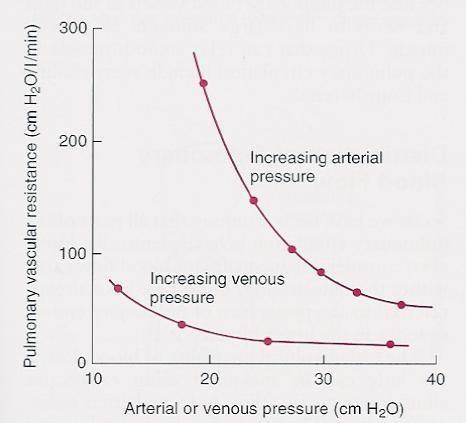 RES-38 Pathophysiology of Pulmonary Vascular Resistance