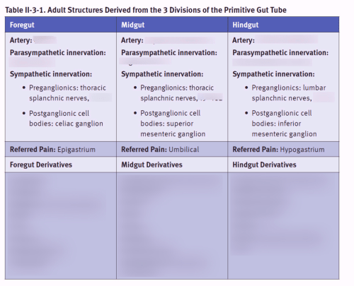 small resolution of divisions of primitive gut