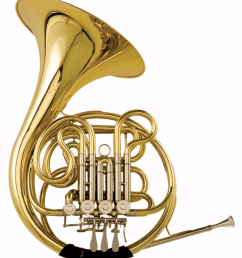 parts of a french horn diagram quizlet french horn silowette layer french horn diagram [ 900 x 1024 Pixel ]