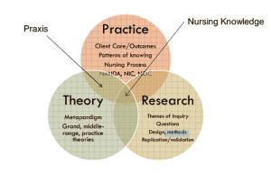 Class 7: Nursing Theory flashcards | Quizlet