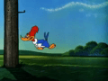 Woody Woodpecker Episode To Catch A Woodpecker