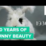 100 Years of Bunny Beauty: Playboy's Got Nothing on These Heart-Thumps | Fuzzy Friday
