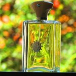 Ciel Man: My Favorite Amouage Fragrances