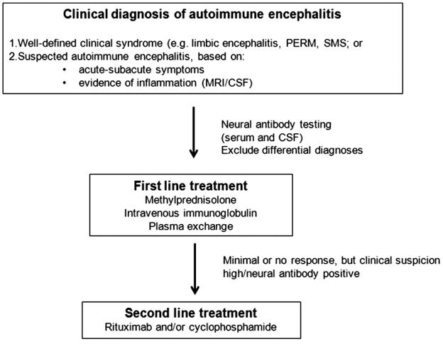 Encephalitis Associated With Autoantibodies Binding To γ
