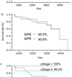 kaplan meier survival rate in the sphincter preserving resection and abdominoperineal resection groups a overall survival rate b disease free survival  [ 786 x 1610 Pixel ]