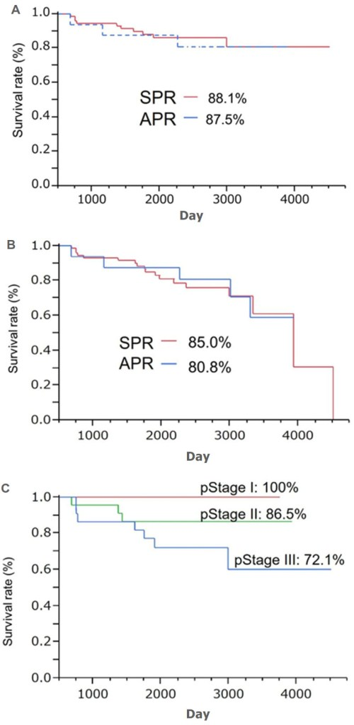 small resolution of kaplan meier survival rate in the sphincter preserving resection and abdominoperineal resection groups a overall survival rate b disease free survival