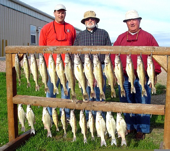 Shallow walleye on plain hooks