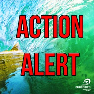 Surfrider Oahu Action Alert