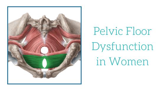 Pelvic Floor Dysfunction in Women  Oahu Spine  Rehab