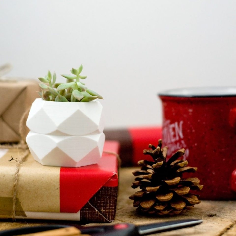 We love these Succulent Planters! What a great gift to give this year! Make sure to order soon and coupon code inside! (click through to get code)