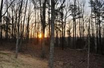 sunrise over Oak Bluff