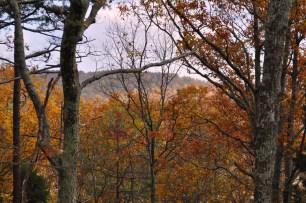 Fall colors at Oak Bluff
