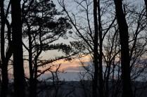 Sunrise on Lot 55