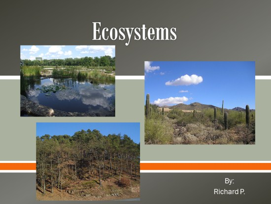 Ecosystems PowerPoint Activity K 5 Computer Lab