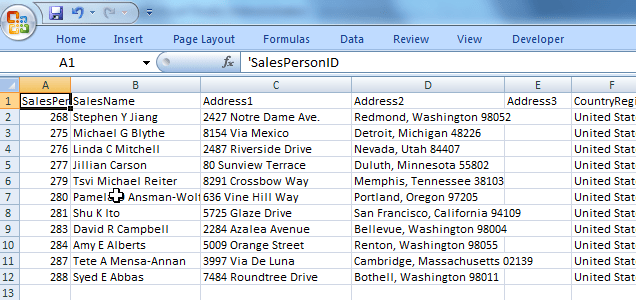 Excel Multicast Sales Data