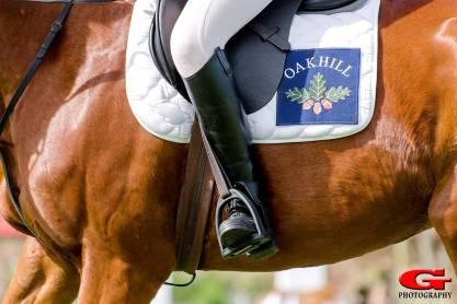 Equestrian-02