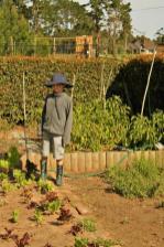 Grade-1-Gardening-Outing (59)