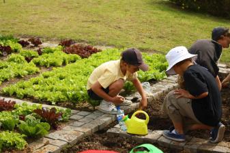 Grade-1-Gardening-Outing (8)