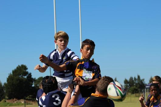 Glenwood Rugby Festival_Prep (35) (Copy)