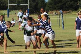 Glenwood Rugby Festival_Prep (49) (Copy)
