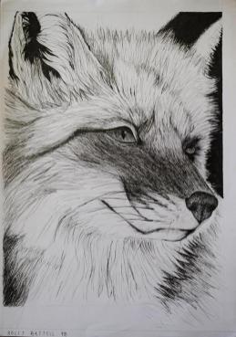 Oakhill Grade 9 Art (2)