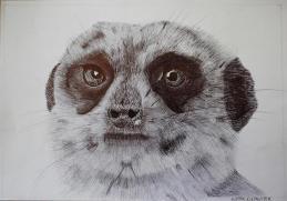 Oakhill Grade 9 Art (3)
