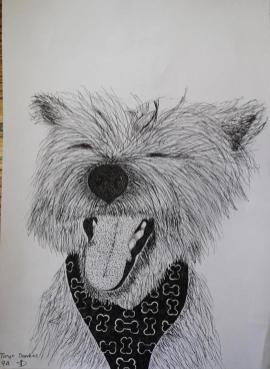 Oakhill Grade 9 Art (5)