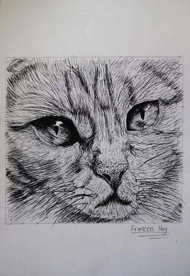 Oakhill Grade 9 Art (9)