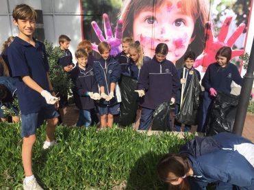 Grade 6 Cleanup Knysna Main Road (4)