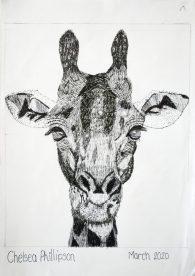 Grade 9 Pen Drawings (4)
