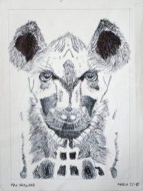 Grade 9 Pen Drawings (7)