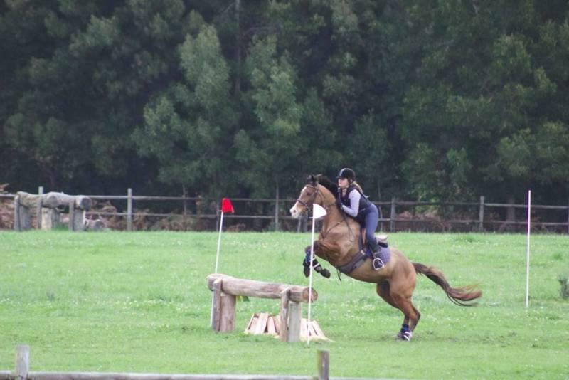 oakhill-equestrian2