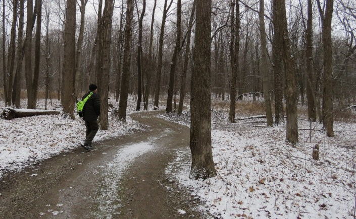 A man walks along a winding trail in the woods on a gloomy winter day.